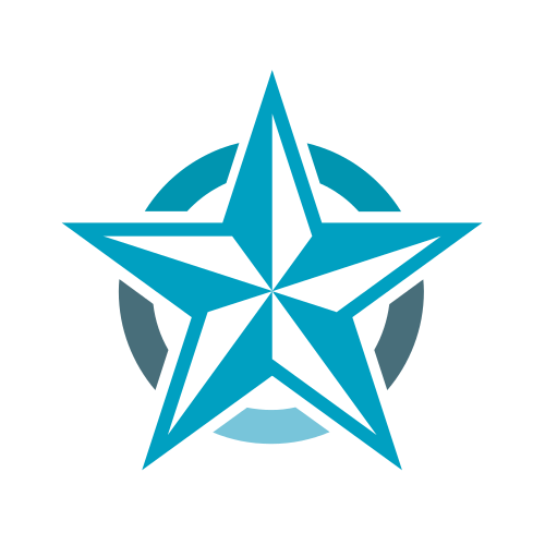 Blue Star Security  Logo