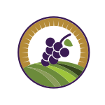 Vineyard Wine Grapes