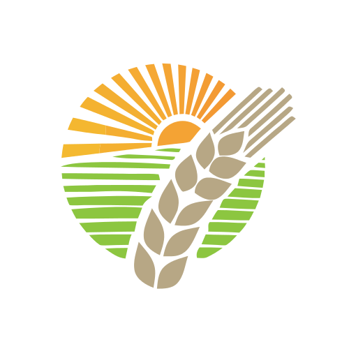 Wheat Farming Agriculture