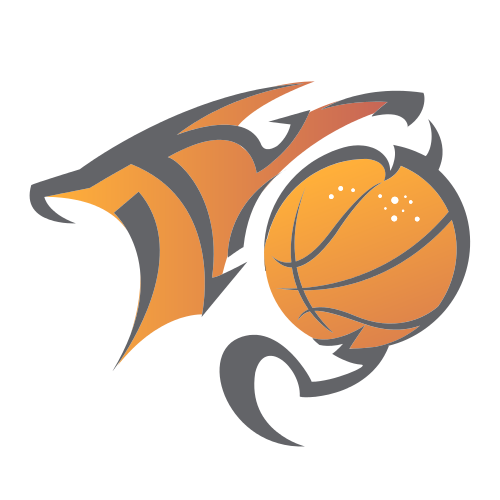 basketball, tiger, mouth, circle, orange,