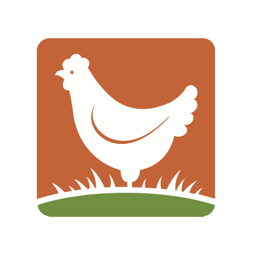 Orange Morning Rooster Logo