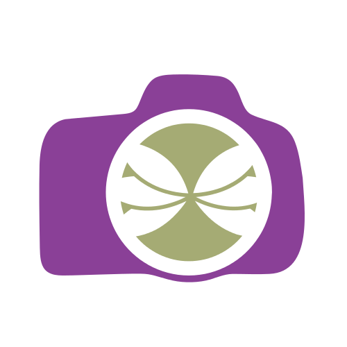 Purple Photography Lens