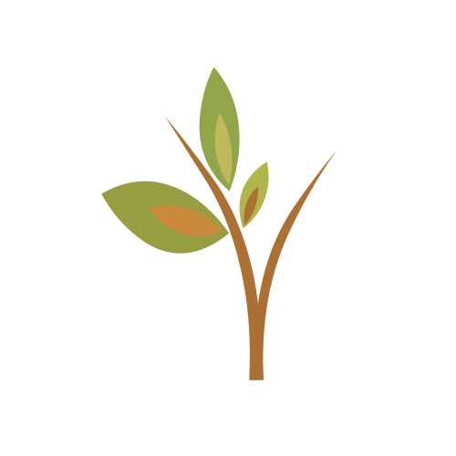 Two Branches Leaves  Logo